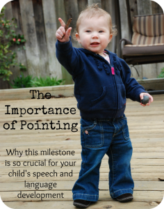 Importance of pointing