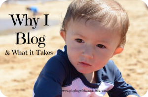 Why I Blog and What it Takes