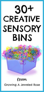 sensory bins from Growing A Jeweled Rose