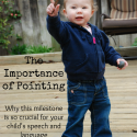 The Importance of Pointing